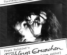 Frühlingserwachen - 1991